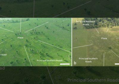 Una vista de pájaro de los pueblos circulares del Amazonas.