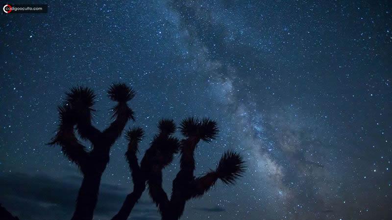 ¿Son los extraterrestres similares a nosotros? Qué nos dice la ciencia