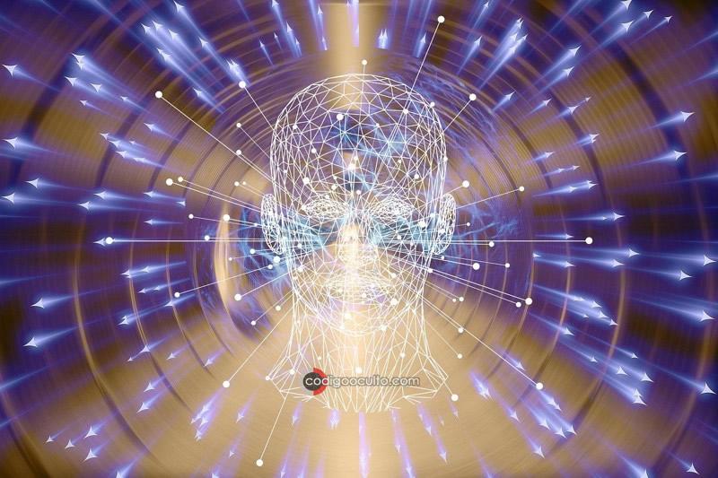 Reencarnación es real y la conciencia está contenida dentro del universo, dicen expertos
