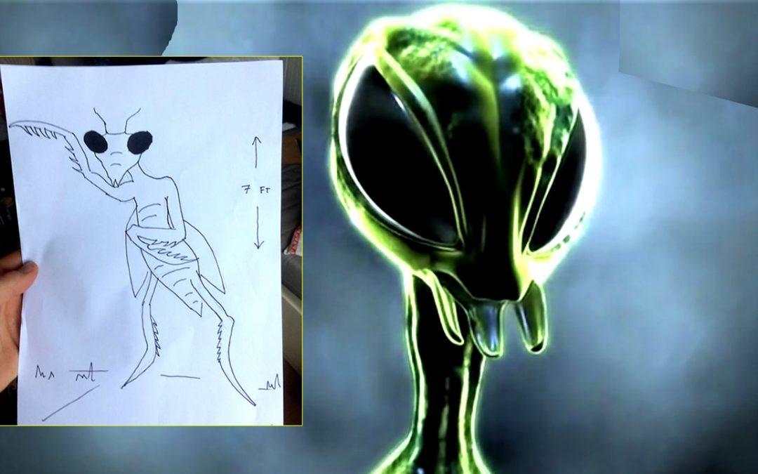 Hombre dice haberse encontrado «frente a frente» con un alienígena insectoide en bosque de Reino Unido