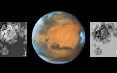 Logran cultivar microbios en trozos de roca proveniente de Marte