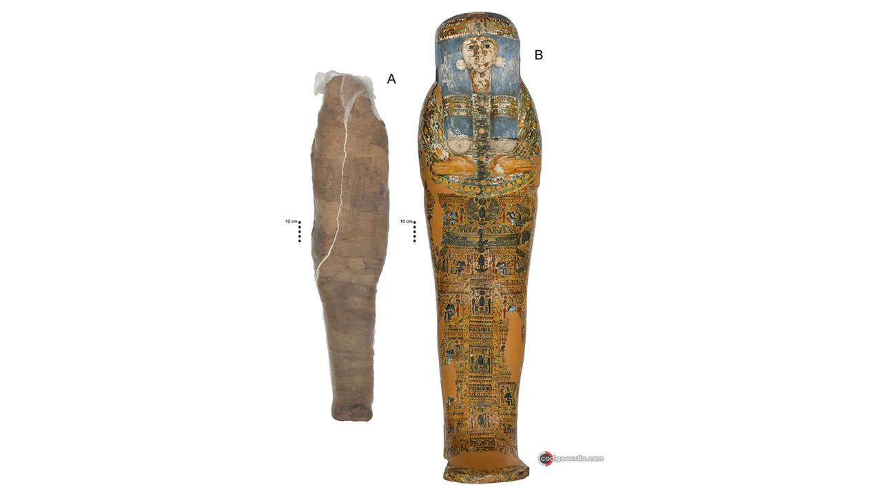 Extremadamente rara momia de barro es descubierta en Egipto