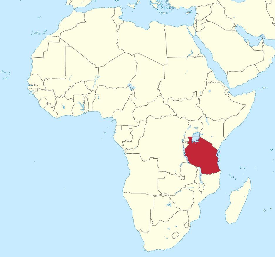 Enfermedad en Tanzania causa que personas vomiten sangre y mueran en cuestión de horas