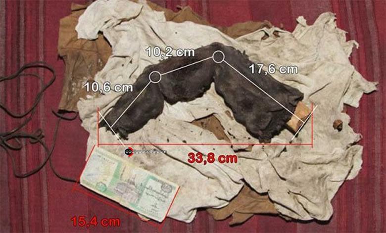 Dedo gigante hallado en Egipto: la reliquia de Bir Hooker
