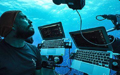 «Presencié criaturas 'alienígenas' avanzadas en el océano», afirma famoso fotógrafo (VÍDEO)