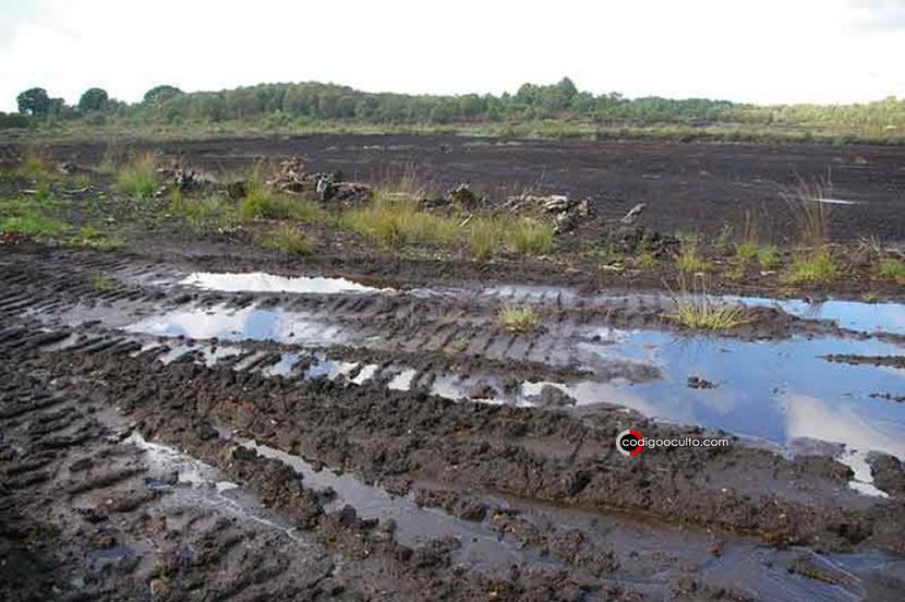 Lindow Moss, también conocido como Saltersley Common, es una turbera de lodo elevado en el borde de Wilmslow en Cheshire, Inglaterra. Allí fue encontrado el cuerpo mencionado en este caso