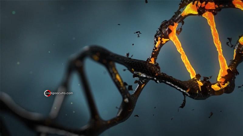 Representación de ADN