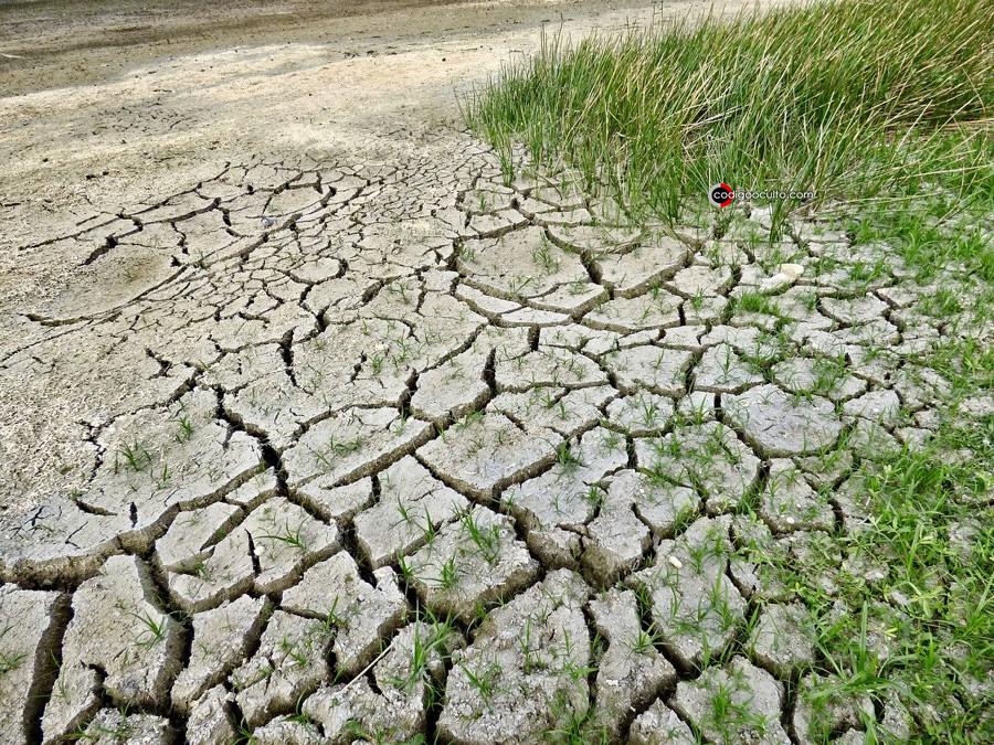 Informe de inteligencia ve un mundo post-COVID afectado por crisis climática y sociedades divididas