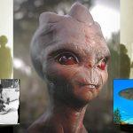 En busca del OVNI de Varginha - ¿Alienígenas en el Amazonas, o locura colectiva?