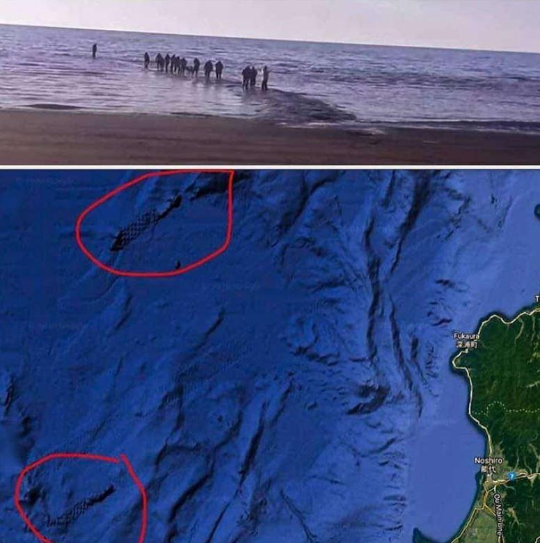 En imágenes satelitales pueden verse estructuras que podrían tratarse de antiguos caminos de piedra construidos por civilizaciones desaparecidas