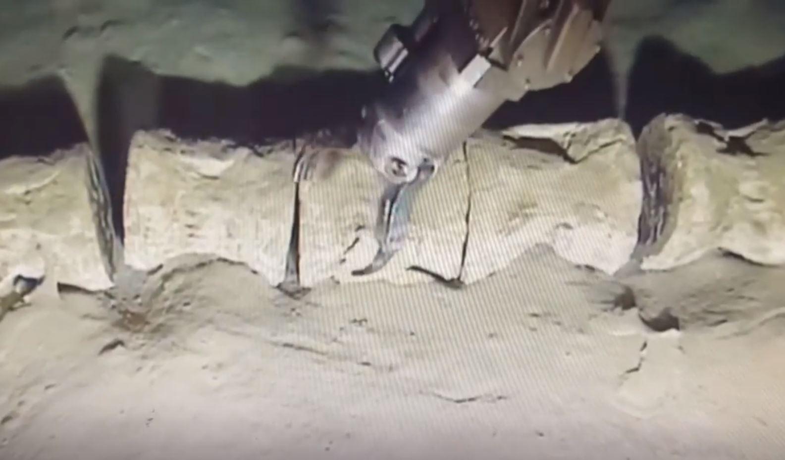 Supuestas vértebras en el fondo del Mar Mediterráneo siendo analizadas con el brazo de un vehículo sumergible