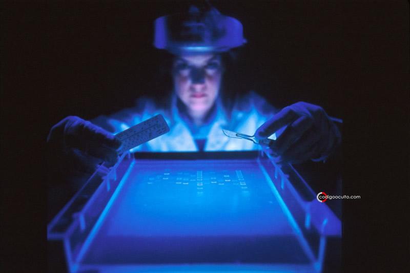 Genoma humano finalmente ha sido secuenciado completamente
