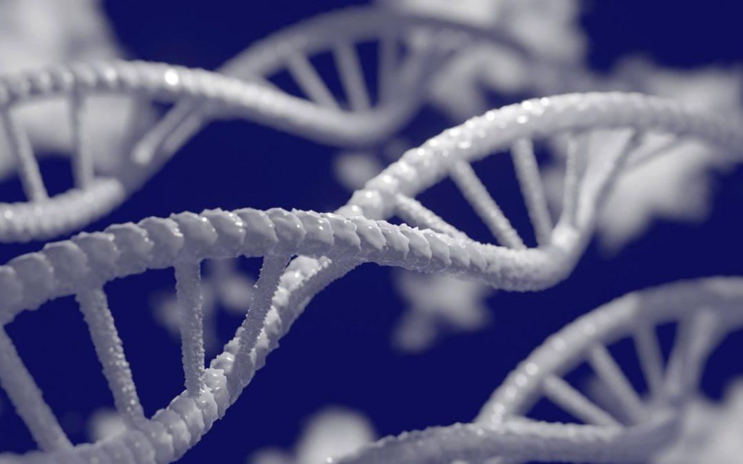 Genoma humano finalmente ha sido secuenciado completamente luego de 20 años