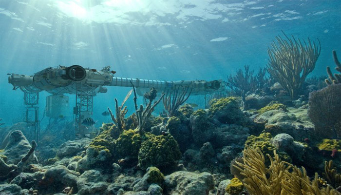 La minería en el fondo del mar podría ser uno de los peligros más importantes del pez rape