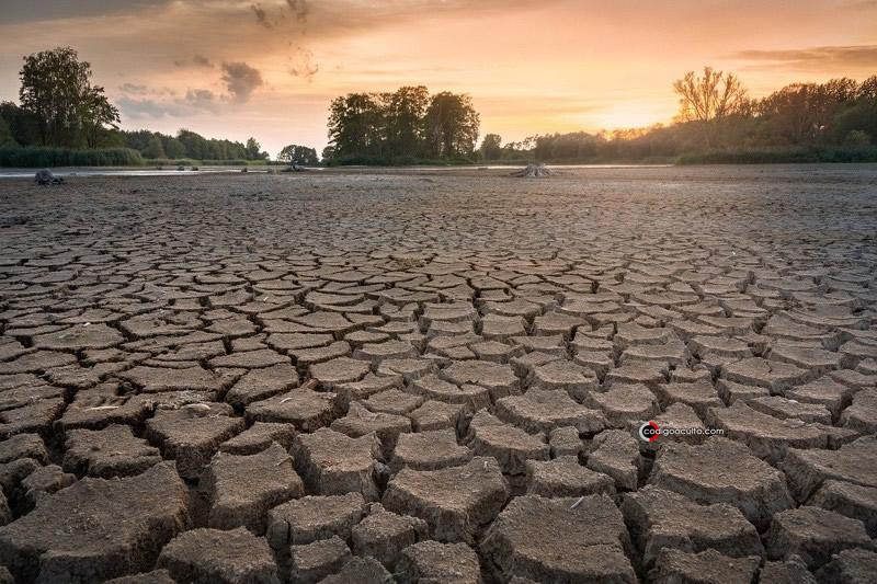 En toda la región, las agencias informaron de un aumento en la necesidad de ayuda alimentaria debido a que las cosechas fracasaron por la sequía.