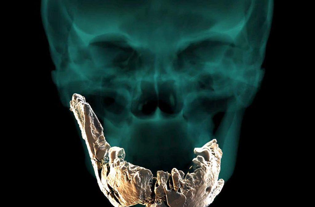 Mandíbula del Homo de Nesher Ramla