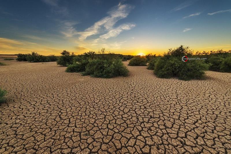 Actividades humanas han roto el equilibrio ecológico natural de la Tierra