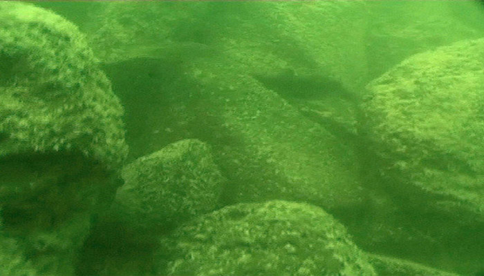 Piedras de basalto que forman la estructura
