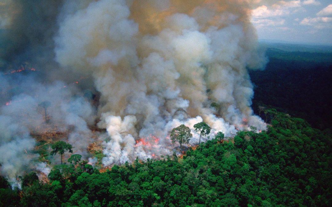 Dióxido de carbono en atmósfera alcanza niveles más altos en la historia de la humanidad