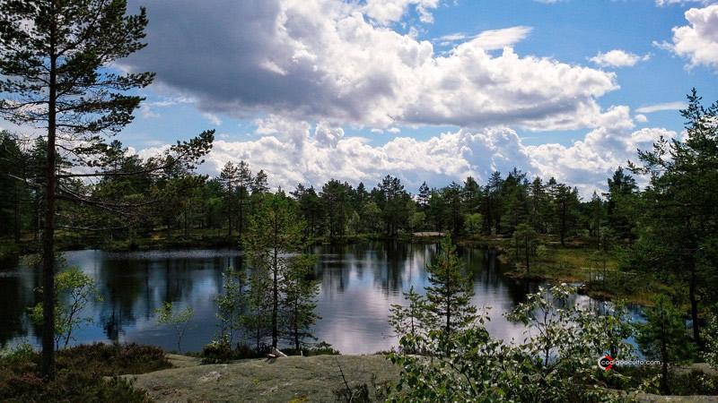 Bosque de Finnemarka