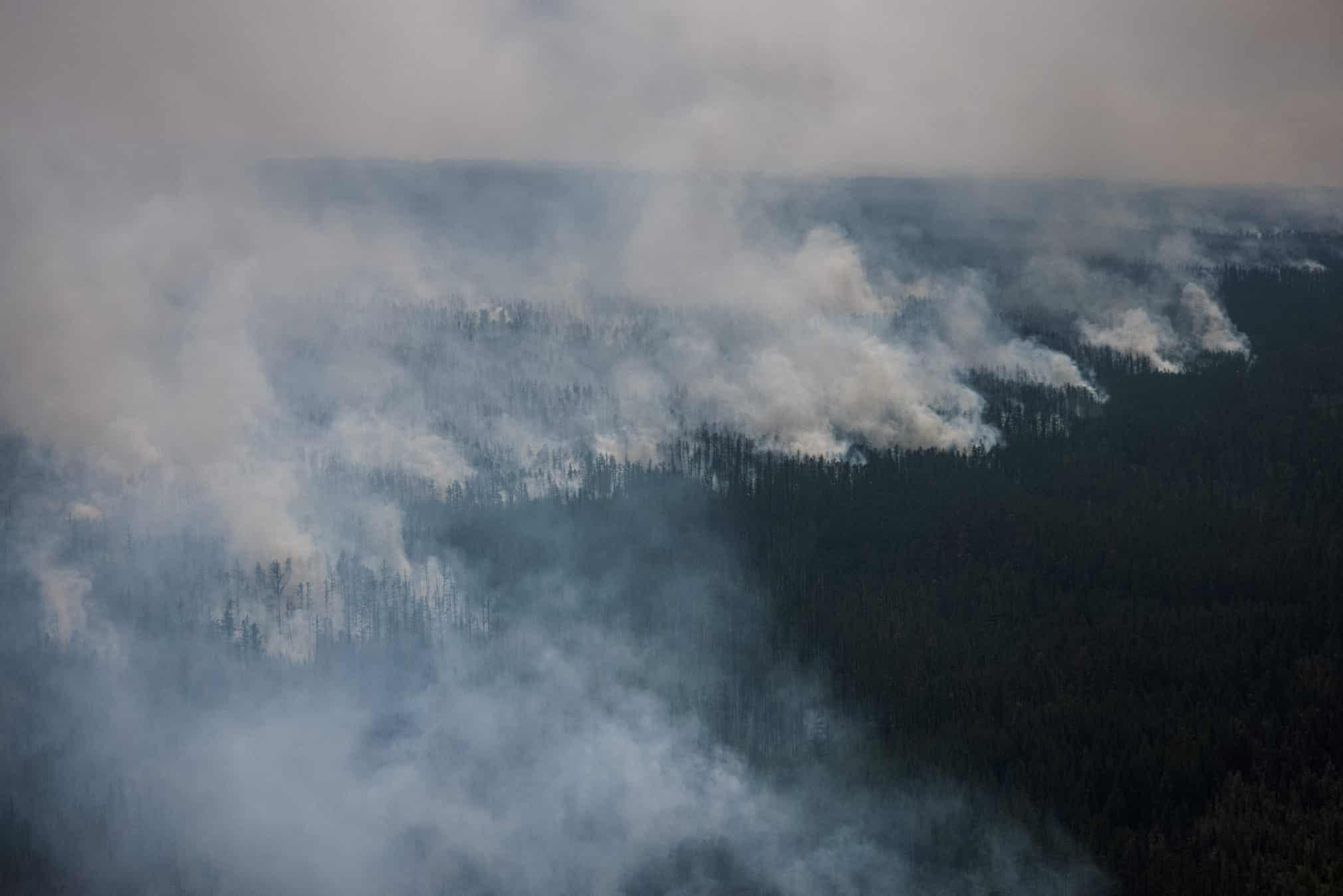 Vastas áreas de Rusia se han visto afectadas por olas de calor y sequías impulsadas por la crisis climática en los últimos años, y se han establecido muchos récords de temperatura