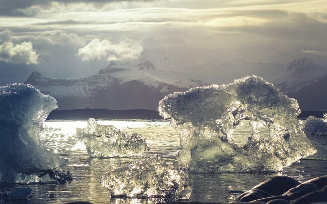 Es oficial: confirman nuevo récord de calor en la Antártida: 18.3 grados Celsius