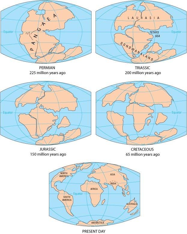 El proceso de separación Pangea
