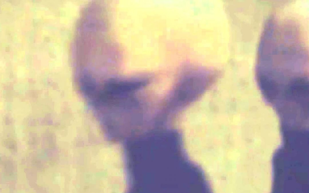 ¿Nos están preparando para una próxima revelación alienígena? (VIDEO)