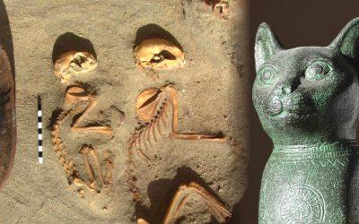 ¿Es este cementerio egipcio de 2.000 años el cementerio de mascotas más antiguo del mundo?