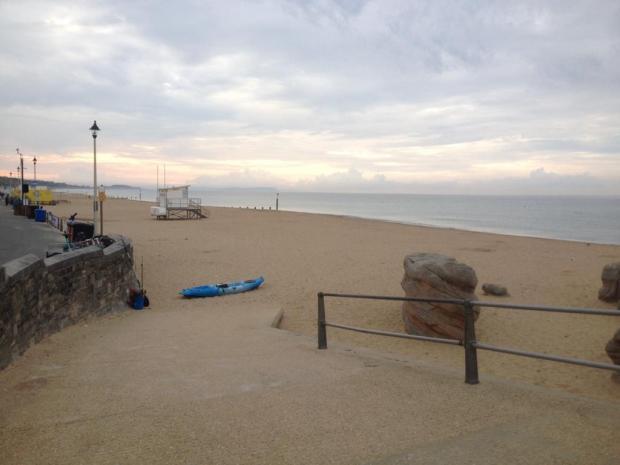 Otros testigos dijeron haber visto la criatura en la misma playa en Inglaterra