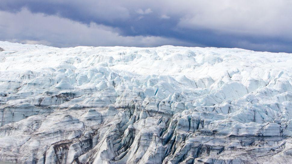 Es posible que la capa de hielo de Groenlandia haya desaparecido mucho más recientemente de lo que se pensaba, permitiendo que las plantas y los árboles prosperen