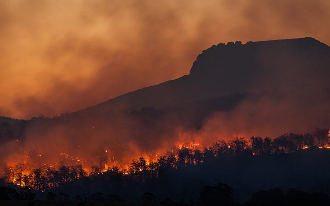 Informe del Estado del Clima: caos climático se acelera y humanidad es culpable en su mayoría