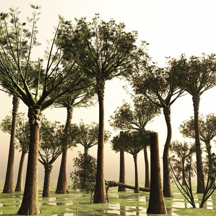 Representación artística de un bosque Eospermatopteris