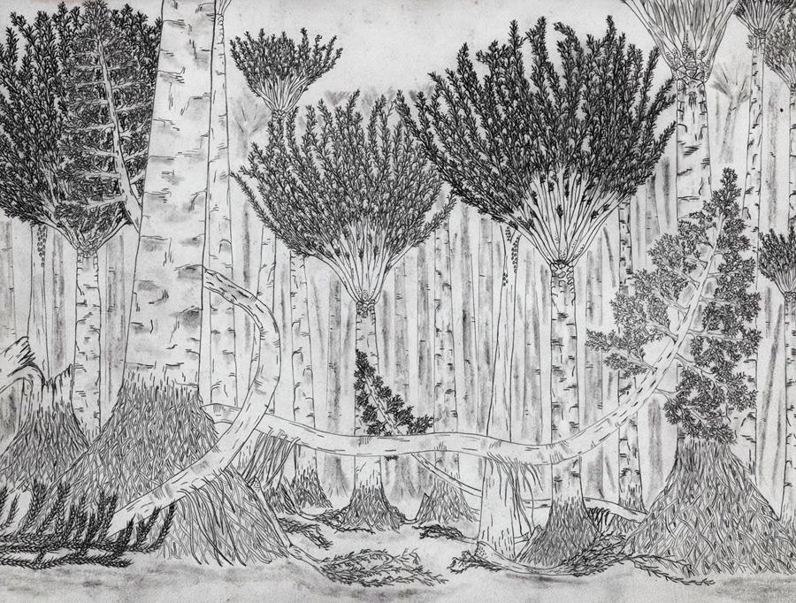 Boceto de cómo habría lucido un antiguo bosque de Eospermatopteris. Representación del bosque de Gilboa hace unos 390 millones de años
