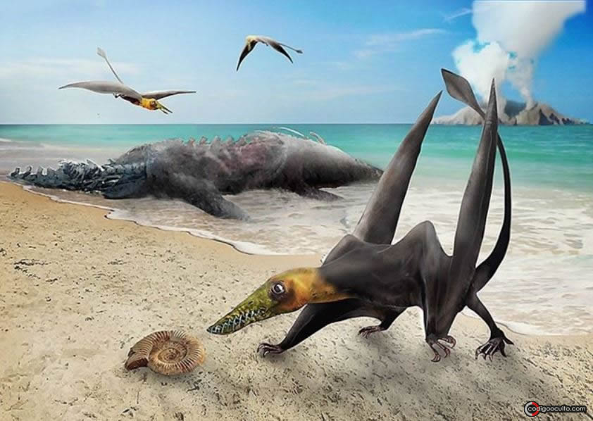 El hallazgo corresponde al más antiguo pterosaurio encontrado hasta el momento en Chile