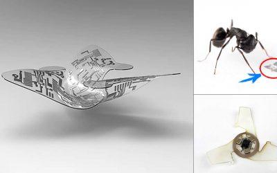 Desarrollan microchip «volador» del tamaño de un grano de arena para «rastrear enfermedades transmitidas por el aire»