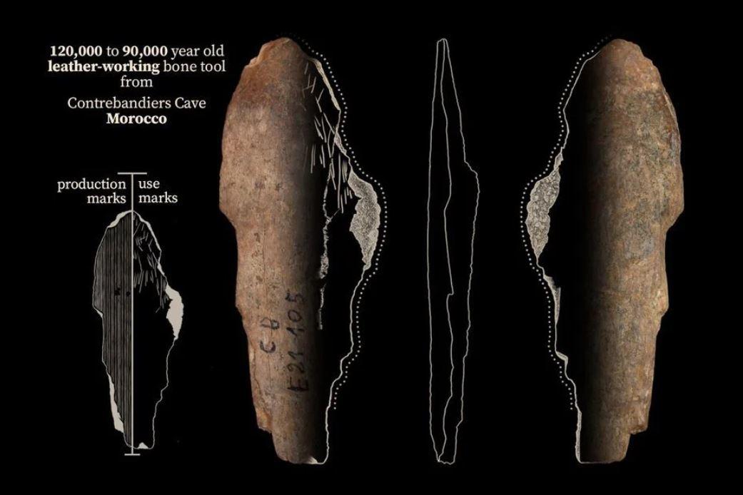 Una herramienta de hueso hallada en la cueva