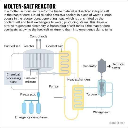 Reactor de sal fundida