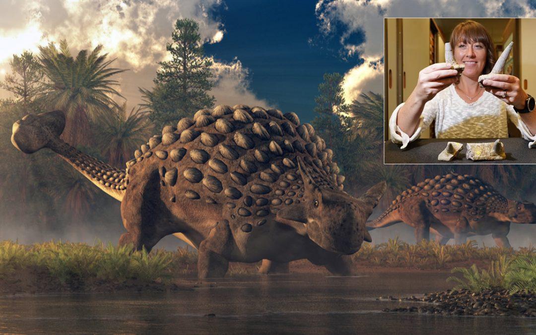 Hallado el anquilosaurio más antiguo conocido, «diferente a cualquier otra cosa en el reino animal»
