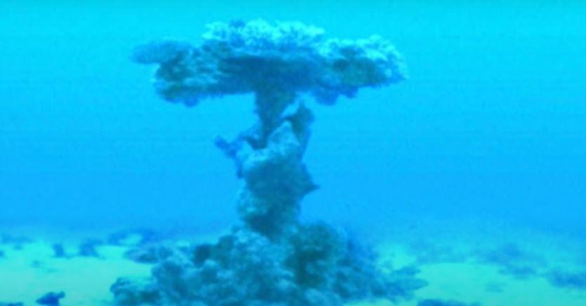 Se afirma que el coral se formó alrededor de los restos del ejército de los faraones, en esta imagen se muestra una rueda de carro