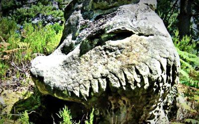Fontainebleau, el bosque de los Gigantes petrificados antediluvianos (VIDEO)
