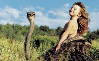 Hadara, la historia del «niño salvaje» que vivió con avestruces en el Sahara